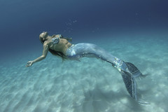 mermaid in repose (bodiver) Tags: ambientlight freediving mermaid fins 511 underwatermodel orcadivers