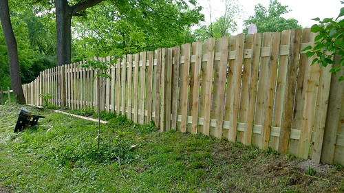 fence progress