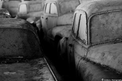 old toys (kidbelz) Tags: auto blackandwhite bw white black cars abandoned monochrome graveyard car canon eos 50mm switzerland rust noir suisse noiretblanc decay cemetary rusty voiture bern junkyard scrapyard blanc voitures blackdiamond noirblanc rouille cimetire autofriedhof 400d img4781 grbetal gurbetal kaufdorf messerli kidbelz wwwautofriedhofch historischerautofriedhofgrbetal explorejan112009372