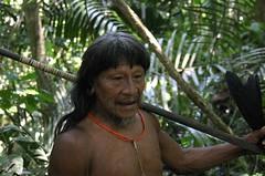 Hunting with the Huaorani (sensaos) Tags: portrait man ecuador community indian traditional hunting selva tribal jungle indians tribe indios hombre hunt indio indigenous spear famke huaorani indigena portet shiripuno waorani sensaos bameno