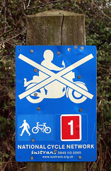 It seems that no Honda mopeds are allowed