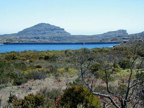 a lake at Table Mountain