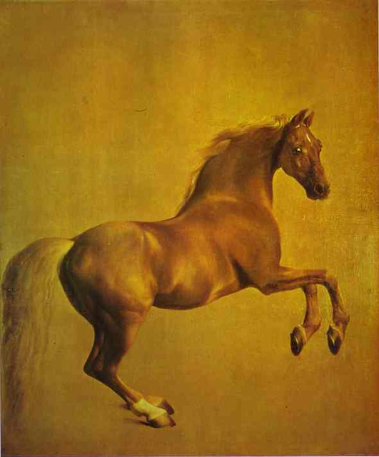 Stubbs, George (1724-1806) - 1761-62 Whistlejacket (National Gallery, London)