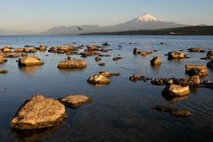 Villarica Volcano (Leonid Plotkin) Tags: chile mountain lake southamerica nature landscape volcano villarica