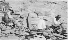 Charles Doolittle Walcott (1850-1927), Sidney Stevens Walcott (1892-1977), and Helen Breese Walcott (1894-1965)