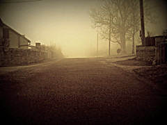 256 F (Nebojsa Mladjenovic) Tags: street winter light urban house mist france cold tree art nature fog digital french outdoors lumix frankreich europe village burgundy hiver panasonic frankrijk maison rue bourgogne francia arbre zima priroda brouillard morvan francais vilage fz50 drvo otw yonne kuca ulica svetlost magla aplusphoto mladjenovic mygearandmepremium mygearandmebronze mygearandmesilver mygearandmegold mygearandmeplatinum mygearandmediamond