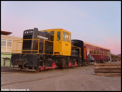 Tren Pampino