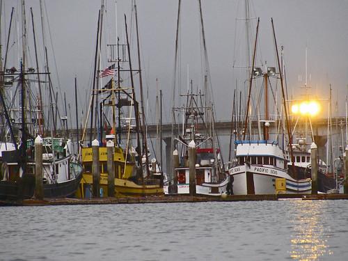 woodleyislandboats