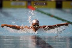 Erica Boratto (gongolo) Tags: roma sport swim divers italia diving piscina swimmingpool swimmers finale nuoto batterie delfino synchronized premiazione foroitalico tuffi sincronizzato 13thfinaworldchampionships mondialidinuotoroma09 ericaburatto trampolinospringboard