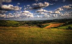 Rollin', Rollin', Rollin', Hillside! (Fozzeee) Tags: uk blue england sky green english clouds golden countryside nikon eric village sheep fluffy sigma august hills valley gb fields clint wooly 1020mm berkshire 2009 inkpen ro