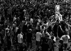 es jaleo (pol ubeda) Tags: barcelona leica people bw horse blancoynegro caballo blackwhite fiesta rangefinder m8 28 menorca pol cavall blancinegre festamajor ubeda jaleo elmarit aspherical alaior telemetrica elmarit28mm28 elmarit28mm leicam8 polubeda esjaleo