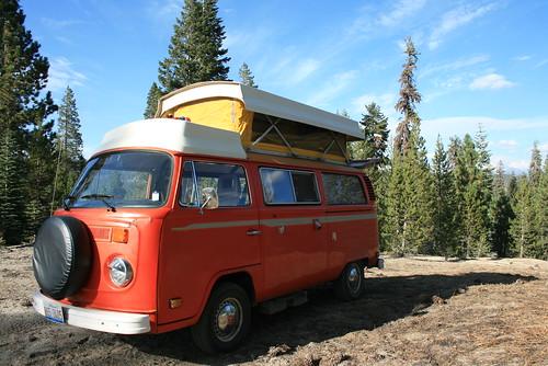 Bus Campsite