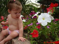 Flores e Florzinha (MarceloPhoto.Bonifcio) Tags: cristina flor uma mais e ao em marcelo bueno papai bonifacio keli florzinha meio babo alcia jardimflores