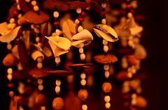 shells (gianluca_cozzolino) Tags: world shells 35mm reflex nikon emotion dia perù emotions nikonfm2 reportage twr analogic diapo gianluca cozzolino p1f1 nikonblack gianlucacozzolino nikonanalogic
