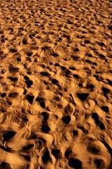 Arabian Desert by Bilal /\/\iRza بلال ميرزا