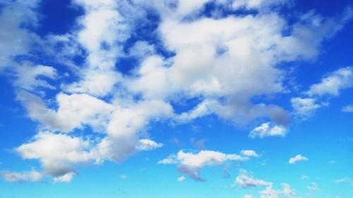 20090218_本日的藍天