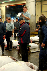 FishMarket_TunaAuction6