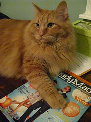 Jasper with his copy of ReadyMade