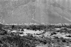 00040008 (thekittykat) Tags: africa vacation film southafrica capetown 35mmfilm mamiya645 blackandwhitefilm