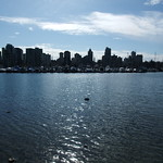Downtown from Stanley Park thumbnail