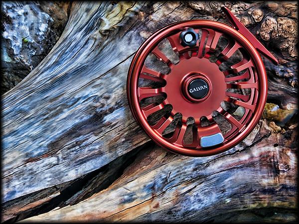 Galvan Torque Driftwood