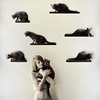 felinamania (holly henry) Tags: cats selfportrait insane crazy obsession disturbed illness mental felinamania horarding