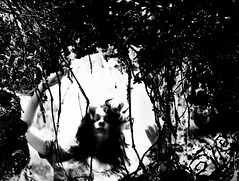 Down the rabbit hole (~aspidistra~) Tags: bw coffeeshop explore sp 121 tribute timburton aliceinwonderland downtherabbithole trp spottheremote