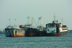 The stars are tied... (king0629II) Tags: ships philippines cebu mactan sunstar mark1 psss palawanstar cebustar guiuanstar
