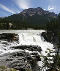 Jasper-Banff Road Trip #72 (Tim Yuan) Tags: park mountains work river rockies jasper rocky falls athabasca 3514