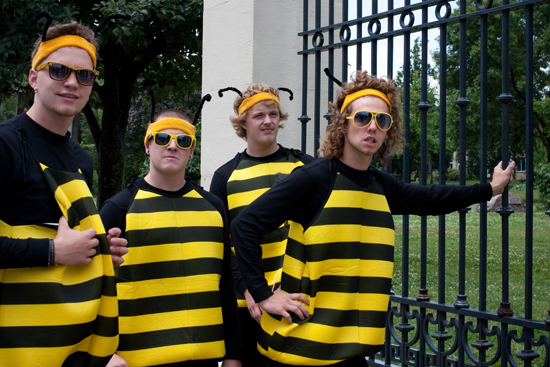 four bumble bees