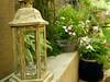 Lantern (boisebluebird) Tags: flowers summer plants garden landscape design boise patio garening michaeltoolson boisebluebirdcom httpwwwboisebluebirdcom boiselandscaping boisegardener