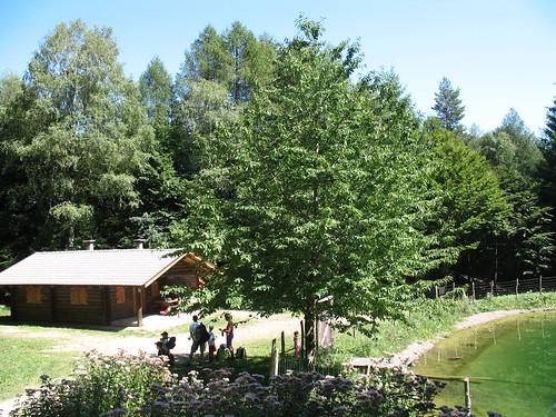 Das Forsthaus Pfaunboden auf dem Weg vom Gasthof Buchwald in Reichtung Bergner Kreuz