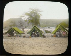 Expedition camp (The Field Museum Library) Tags: africa expedition mammals somalia zoology 1896 carlakeley specimencollection dgelliot laferuk