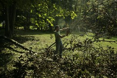 _MG_6487.JPG (zimbablade) Tags: trees sleepyhollow dougmiller videopoem