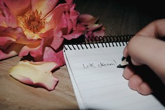 ...because God will embrace those dreams (Zainab M. Photography) Tags: life flower nature pencil paper goal hand dreams dreamworld notepad achieve