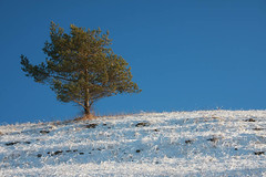 Winterwanderung im Helbetal