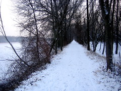 IMG_6476 (alberto238) Tags: winter lakeside snowtrails