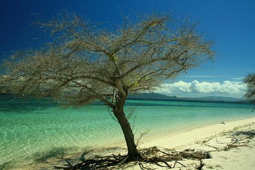 Kanawa Island, Flores - Nusa Tenggara Timur - Indonesia