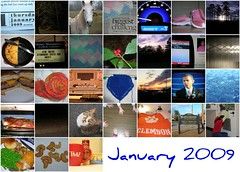 January '09 Mosaic