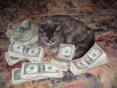The Kitty and the Money