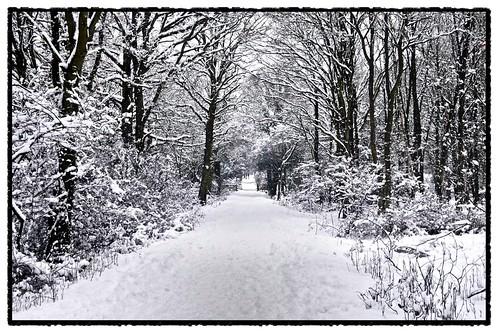 snowday 09