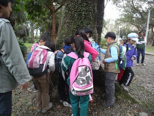 你拍攝的 60孩子開心找蕨類。