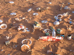 SOS   Outardes, Gazelles du Grand Sahara Algérien 3304015099_17fcb46720_m