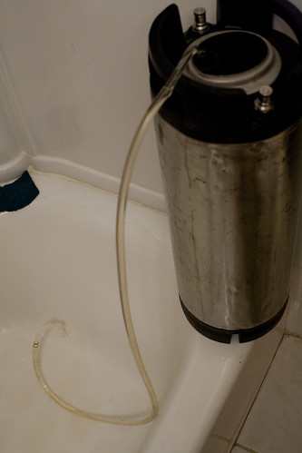 siphoning the sanitizer solution from the keg