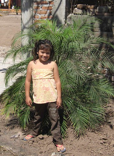 Juliette and a transplanted palm