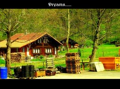DreamHouse....... (Indranil.m) Tags: brown house tree green beautiful switzerland nikon may scenary 2008 vignette interlaken s10 indranil mukherjee