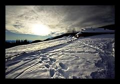 mount_03 (Simon Donini) Tags: winter mountain snow alps colour tree alberi landscape val neve trento inverno alpi montagna paesaggio trentino mocheni