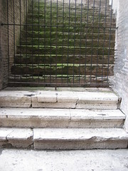 """Mossy stairs • <a style=""""font-size:0.8em;"""" href=""""http://www.flickr.com/photos/36178200@N05/3390658079/"""" target=""""_blank"""">View on Flickr</a>"""