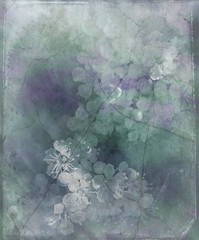 Imperfection (virtually_supine popping in and out) Tags: blue white blur colour macro green closeup blossom manipulation textures brightlight mauve layers experimentation pyracantha summerblossom gradientfill paletones floralcreations memoriesbook photoshopelements7 awardtree magicunicornverybest colouroverblackandwhiteconversion