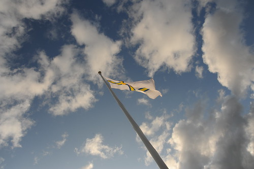 STFの旗